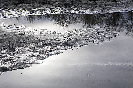 River Reflections by Michele Cornelius