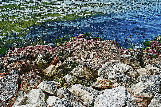 George D Gordon III - River Rocks