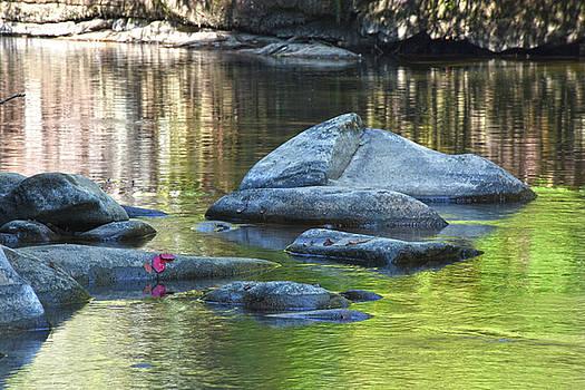 River Rocks  by Tim Ford