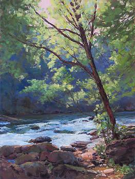 River Run by Marsha Savage