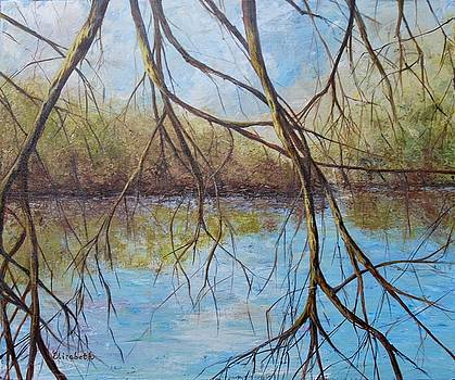 River Through the Trees by Beth Maddox