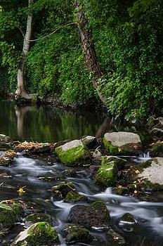 Martina Fagan - River Tolka