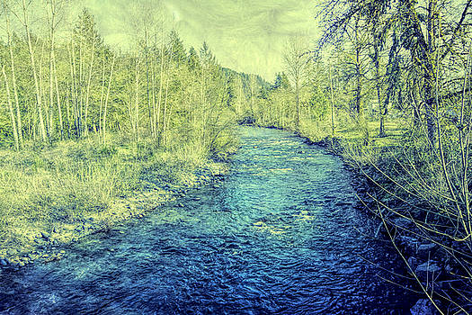 Bonnie Bruno - River View