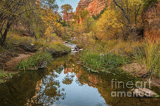 Jamie Pham - River View in Zion