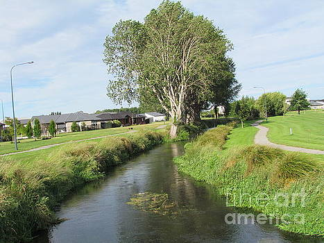 River Walk. by Joyce Woodhouse