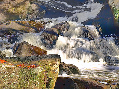River Wild by Raymond Earley