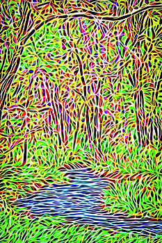 River Woods Enchantment by Joel Bruce Wallach