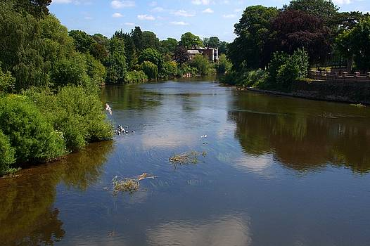 River Wye from Hereford Old Bridge by Chris Day