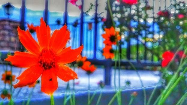 Riverhouse flowers by Dustin Soph