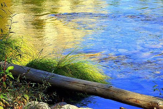 Lynn Bawden - River