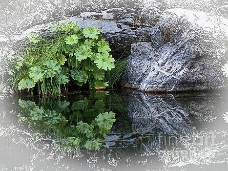 Rivers Edge by Robert Ball