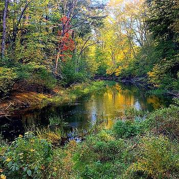 Riverscape in Autumn by Richard Hinds
