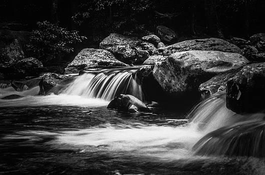 Riverside in Mono by Rodney Lee Williams