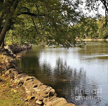 Riverside Shade             September             Indiana by Rory Cubel