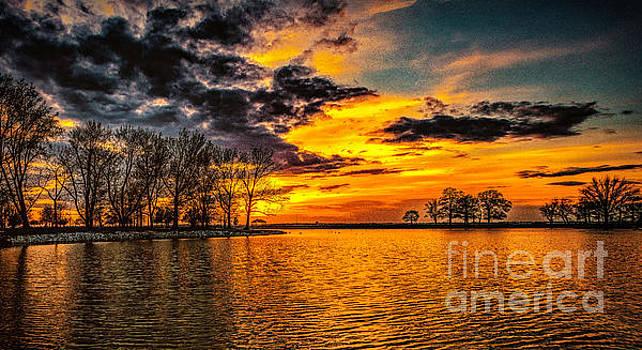 Nick Zelinsky - Riverview Beach Park Sunset