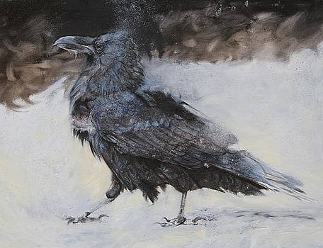 Roac The Old Raven of Ravenhill by Susie Gordon