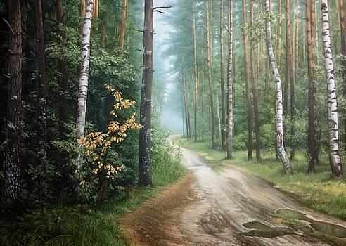 Road by Dmitry Dmitriev