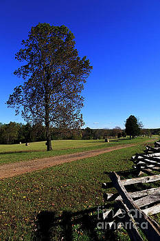 Road Leading to McLean House in Appomattox Court House by Jill Lang