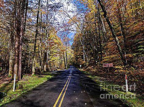 Road Through Fall by Paul Mashburn