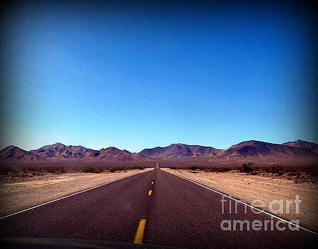Road to Death Valley   by Joy Patzner