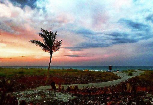 Road to Florida Beach by Allan Einhorn