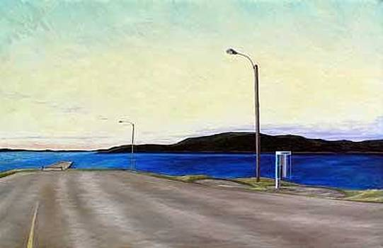 Road To Long Island Newfoundland by Lisa Graziotto