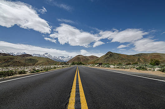 Margaret Pitcher - Road to Mt. Whitney
