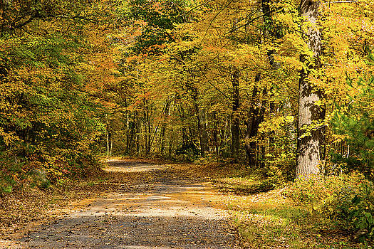 Road to nowhere town Massachusetts by Jeff Folger