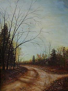 Road to Stouffville by Sharon Steinhaus