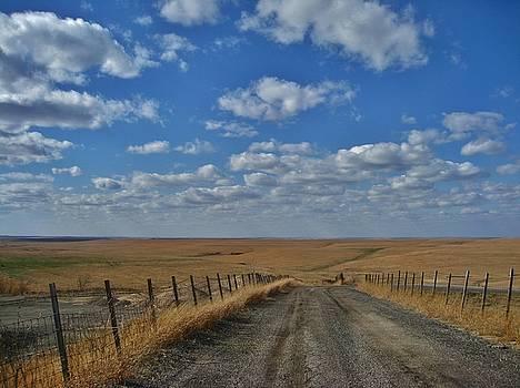 Road to the Prairie  by Crystal Socha