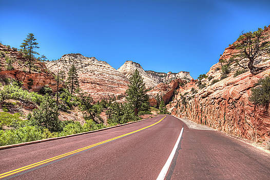 Road to Zion by Brent Durken