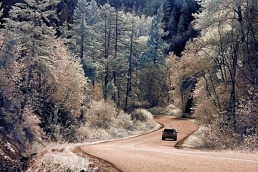 Bill Kellett - Road Trip