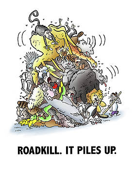Roadkill by Mark Armstrong