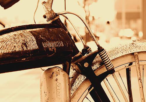 Roadmaster Sepia by J Austin