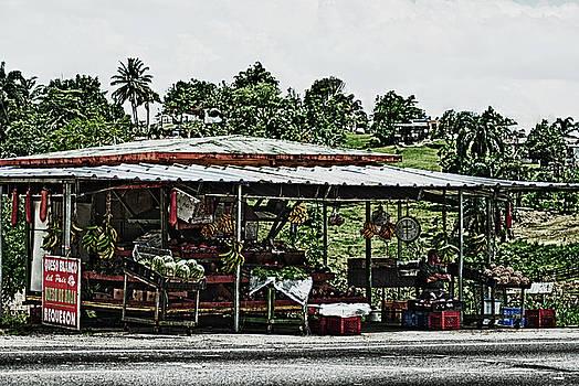 Roadside Bodega in Puerto Rico by Frank Feliciano