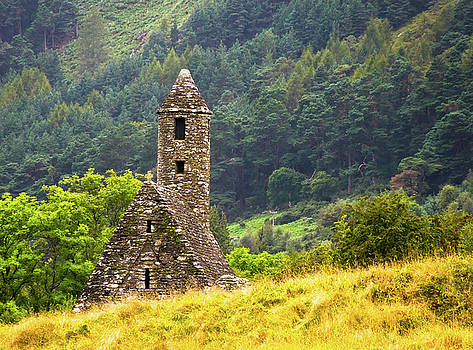 Donna Shaw - Roadside Castle