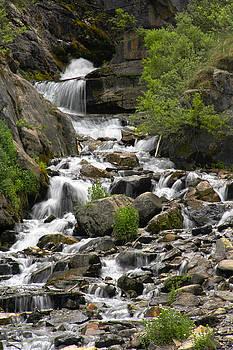 Mike McGlothlen - Roadside Mountain Stream