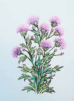 Roadside Thistles by Katherine Young-Beck