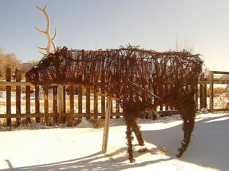 Roaming Elk by Floyd Archuleta