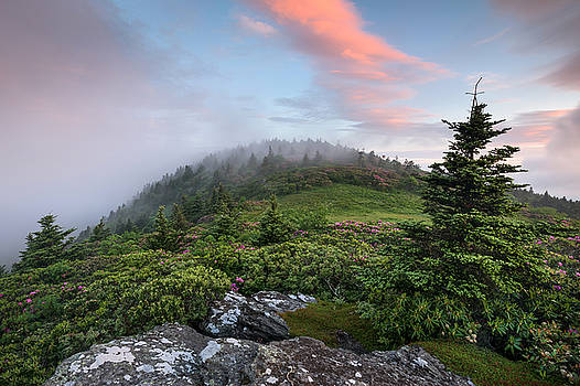 Roan Highlands Grassy Ridge Mountain Sunrise by Mark VanDyke