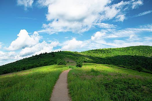 Roan Ridge by Jim Neal