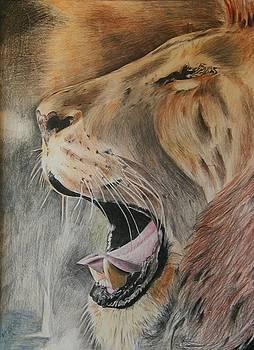 Roar of the Lion by Bennie Parker