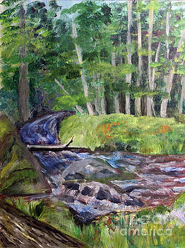 Roaring Brook by Donna Walsh