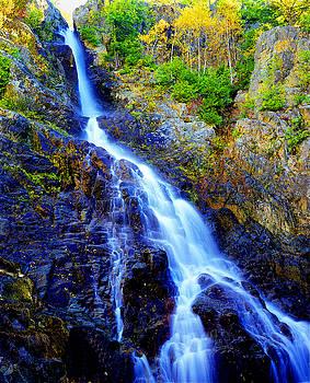 Roaring Brook Falls by Frank Houck