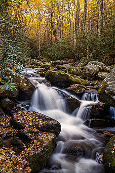 Roaring Fork Waterfall at Autumn by Andrew Soundarajan