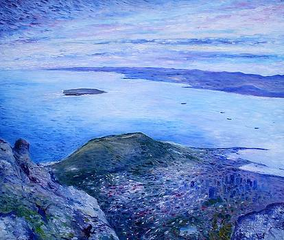 Robben Island From Table Mountain Cape Town South Africa Dawn 2000  by Enver Larney