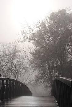 Robertson Park Bridge by Leah Highland