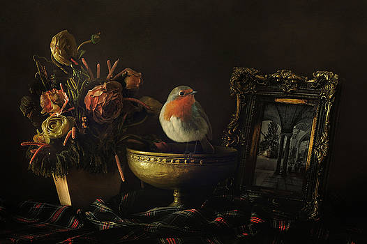 Robin and Still Life by Sue Fulton