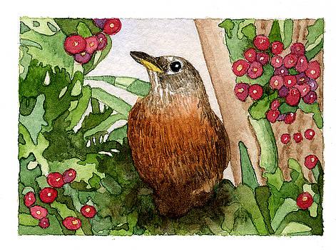 Robin by Eunice Olson