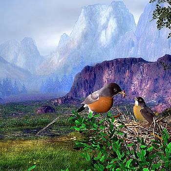 John Junek - Robin feeding baby robin